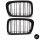 SET Kühlergrill Schwarz GLANZ Doppelsteg passt für BMW E46 Limo Touring bj 98-01