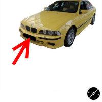 Kennzeichenhalterung Grundplatte nur für BMW E39 M-Paket M5 Nummernschildhalter